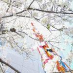 上野動物園・博物館・美術館など4月12日まで臨時休園延長(2020/3/27)
