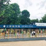 上野動物園 新ジャイアントパンダ舎「パンダのもり」オープン!