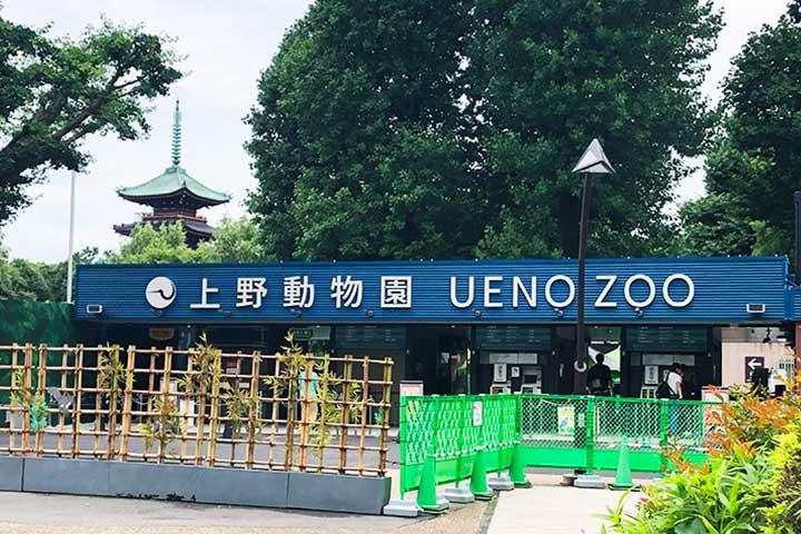 上野動物園20201225